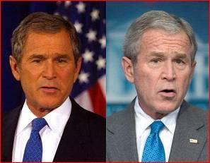 Bush aging