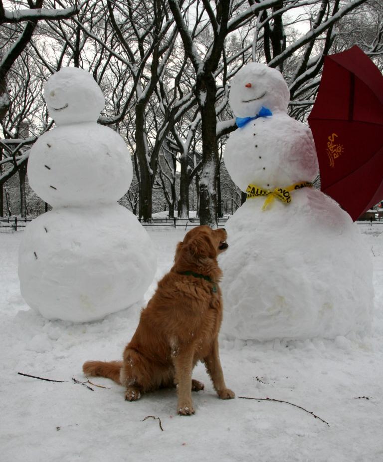 Feb Snow Day 314