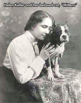 Hellen Keller cat dog