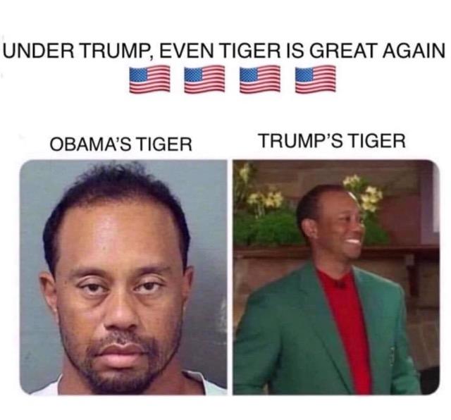 Trump Tiger