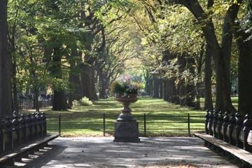 Autumn_central_park_2